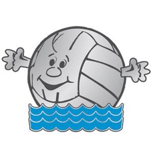 Vattenpolobollen silver